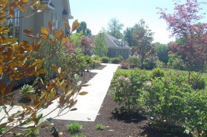 Landscape Management PA