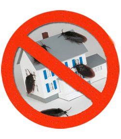 Pest Control Services – Montgomery County, PA